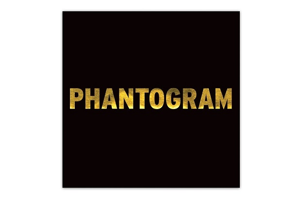 Новая композиция Phantogram – Black Out Days