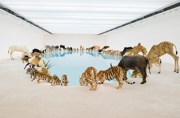 Работы Цай Гоцяна в художественной галерее в Queensland