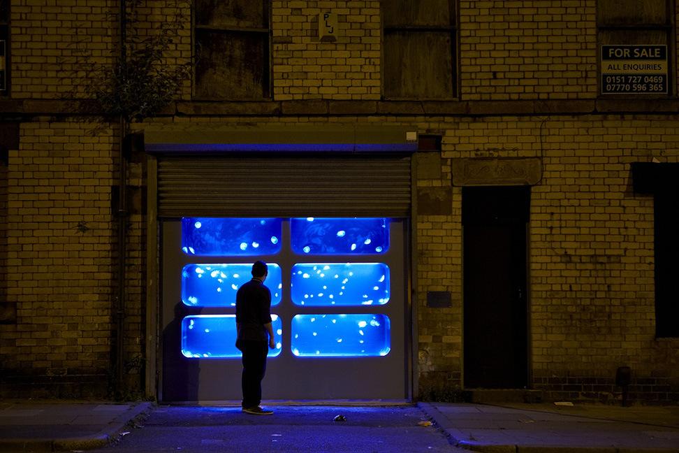 Аквариум с медузами, установленный в заброшенном здании в Ливерпуле
