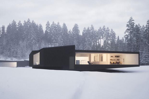 Twin Houses: два дома геометрической формы