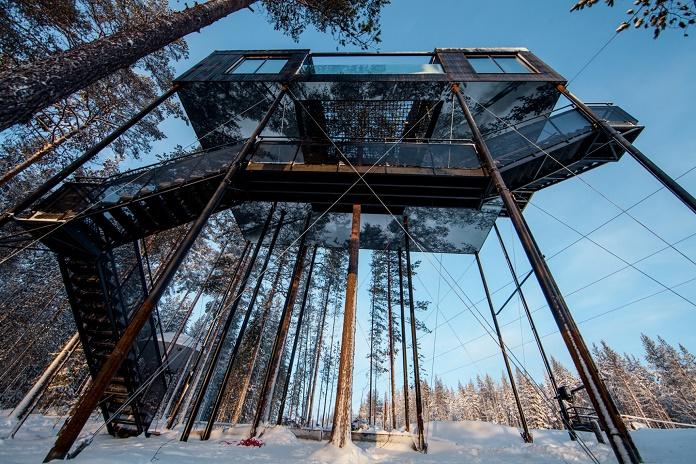 """""""The 7th Room"""" - номер на дереве, открывающий захватывающие пейзажи Швеции"""